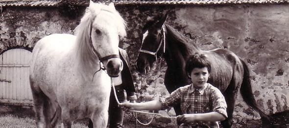 Olivier com cavalos